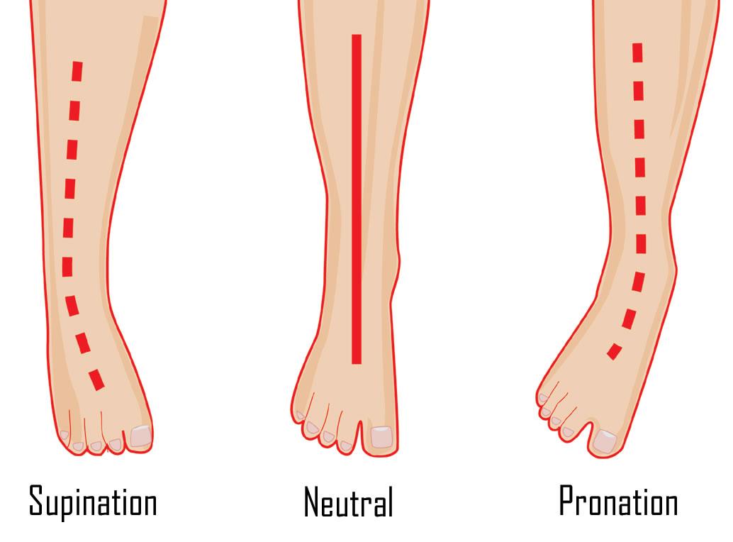 Foot Levelers - Reservoir of HEALTH